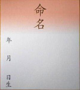 画像1: 大色紙 鳥の子 命名色紙 (1)
